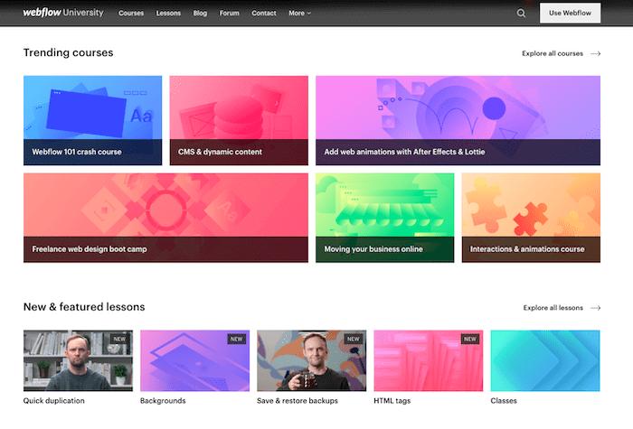 webflow university courses